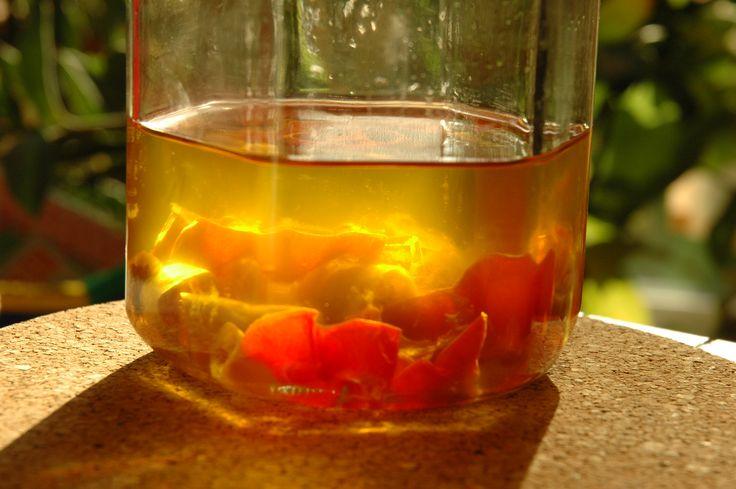 Genießen Sie Rote Beete ….. auch in Kombination mit Chili-Öl. Meine zwei Gefälligkeiten für …