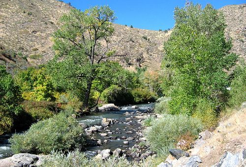 The creek running through Clear Creek Canyon Park by Jefferson County Colorado, via Flickr