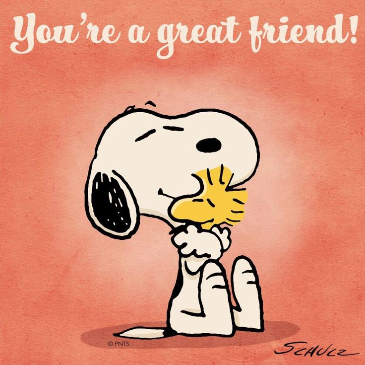 Friendship Greatness: Top 25+ Best Great Friends Quotes Ideas On Pinterest