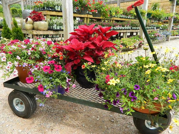 I Can T Wait To Fill My Wagon With Flowers And Plants From Www Sprinkler Birminghamnurseriesfillbaby