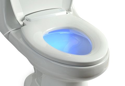I want this!  Heated Toilet Seat with Nightlight.