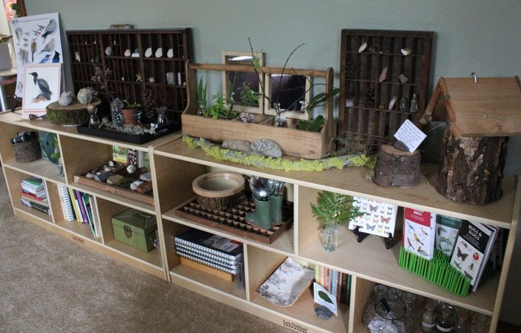 creating a nature table - coin atelier nature