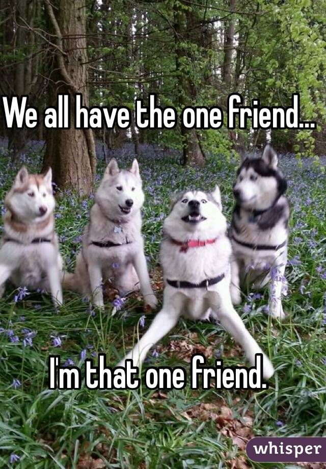We All Have The One Friend.