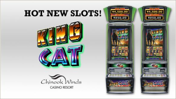 Casino shuttle chinook winds