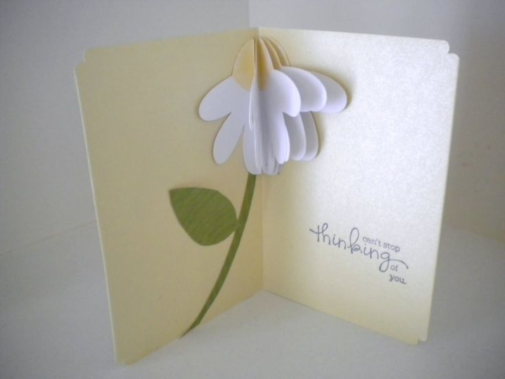 pop up cards | got the idea from this book