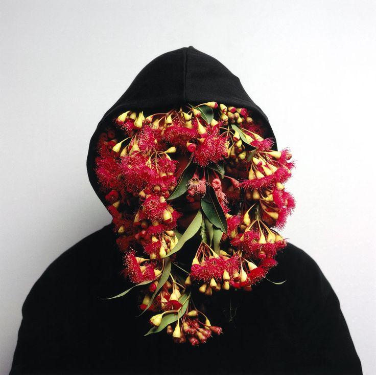 Christian Thompson, Black Gum 2 http://www.theaustralian.com.au/arts/review/artist-christian-thompsons-body-of-work/story-fn9n8gph-1226637803161