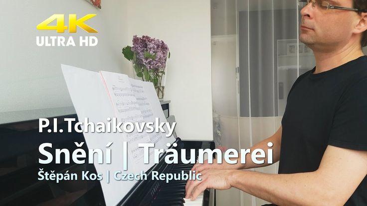 Snění - Čajkovskij |  Träumerei - Tchaikovsky | Dreams
