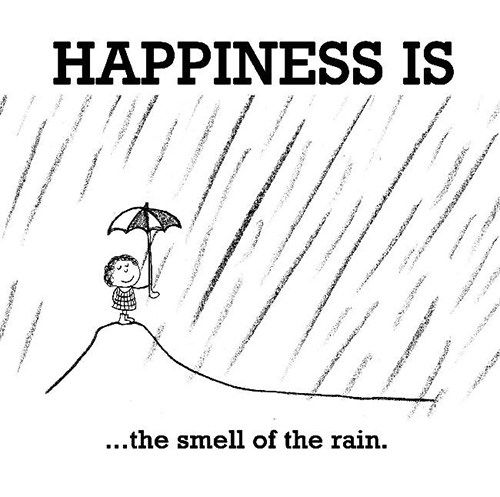 Happiness #394: Happiness is the smell of the rain.