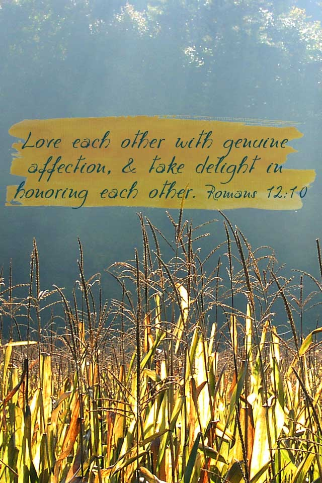 Love each other with genuine affection, and take delight in honoring each other.