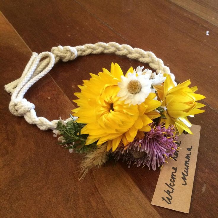 Bloodwood Botanica   Floral dog collars for special occasions. Paper daisies and isopogon