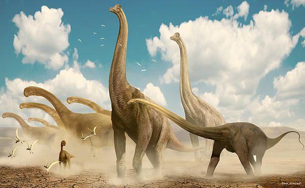 Diplodocus camarasaurus brachiosaurus by jan sovak dino - Dinosaure diplodocus ...