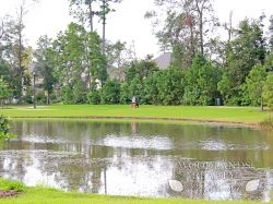 Lake and field with pathways for walking and exercising in a nature surrounded space - Gallery - Woodlands Realty Pros