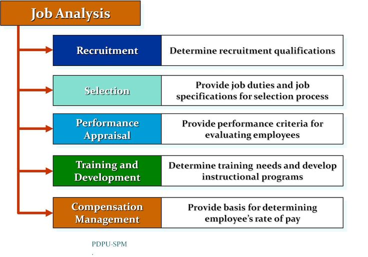 Bba Study Notes Job Analysis  A Basic Understanding  Business