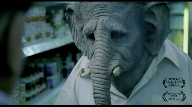 Elefante, A Dark Comedy Short Film About a Man Who Turns into an Elephant