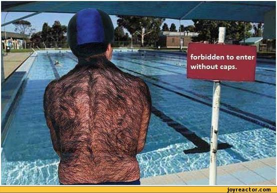 Funny Swimming Forbidden To Enter Without Caps Swimming Pool Hairy Man Funny Pin