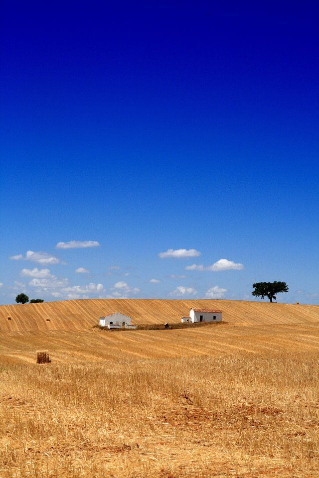 Ourique - Alentejo, Portugal Photo: Maria Negreiros #travel #hotel #BoutiqueHotelPoejo #Portugal