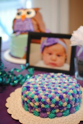 Baby Girl Purple and Teal Turquoise First Birthday Owl Party www.directorjewels.com - Smash Cake, Owls, Photo Display