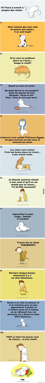 10 Trucs à savoir à propos des chats. – Québec Meme +