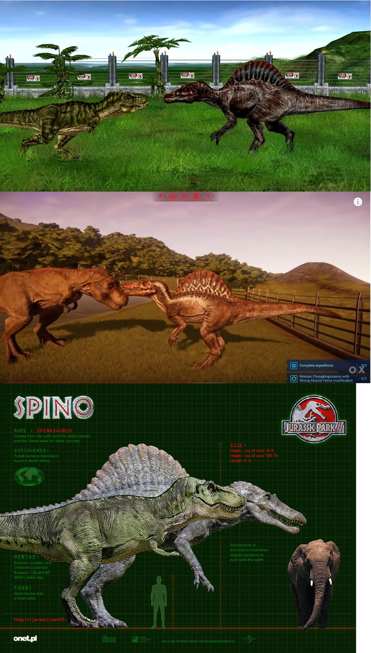 """DinoEsculturas on Instagram """"JURASSIC PARK Spinosaurus"""