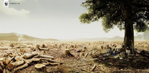 31 Clever and Meaningful Ads from the WWF for Nature