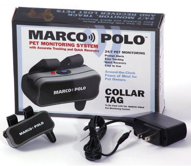 Dog Tracker Tracking Pet Collar Tag Accessory Marco Polo Pet Monitoring Tracking #MarcoPolo