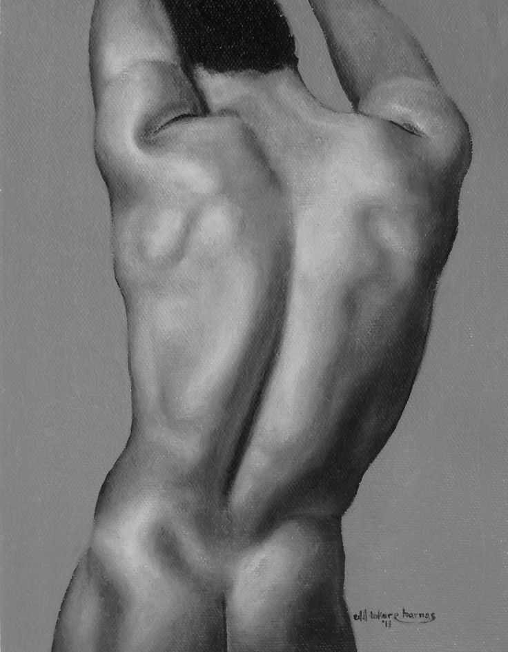 Male Back  Malby  Pinterest  Figure Painting, Male -8688