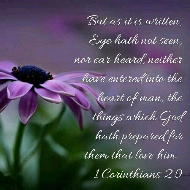 1 Corinthians 2:9 KJV What a powerful verse From God to His children...so much comfort in just one verse!!!