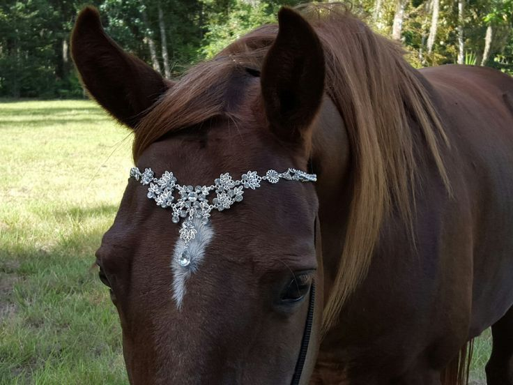 Faux Diamond Browband for Pony, Horse or Draft - Equine Bling Tack Brow Band Jewelry - Horse Lover Gift by MyBuddyBling on Etsy https://www.etsy.com/listing/253084086/faux-diamond-browband-for-pony-horse-or
