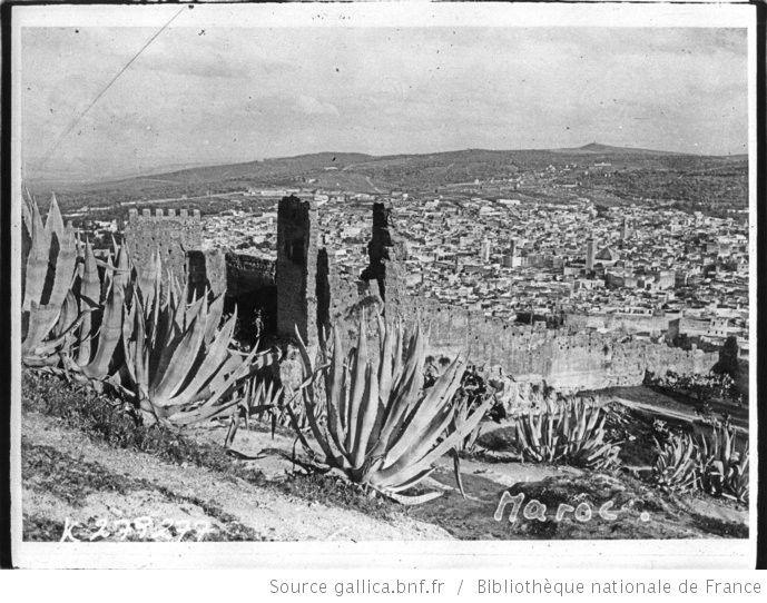 [Recueil. Maroc, voyage du président de la république française M. Alexandre Millerand du 05 au 15 avril 1922 et diverses vues de villes du Maroc en 1925] : [lot de photographies de presse] / [Meurisse ?] - 11