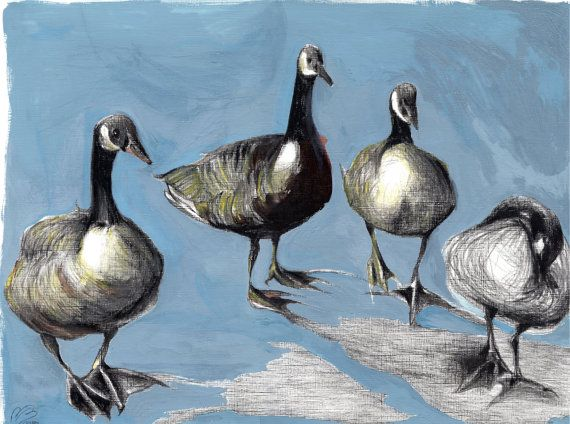 Friendly Canada Geese Charcoal & Gouache painting by PillowsAway
