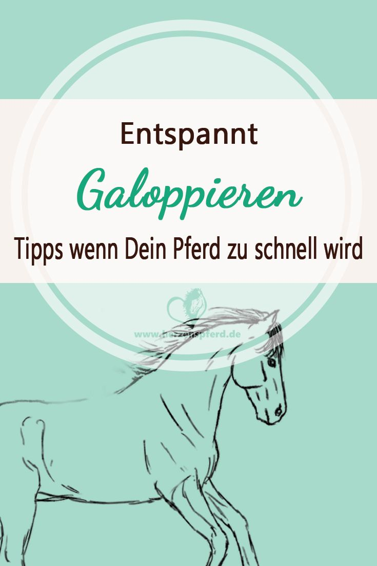 Entspannt Galoppieren - das kannst Du tun wenn Dein Pferd zu schnell wird!