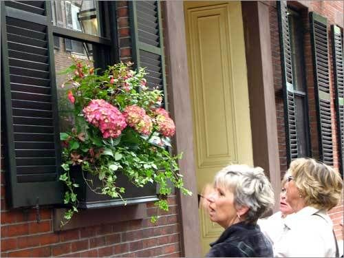 window box: Window Gardens, Gardens Favorite, Outdoor Ideas, Pretty Window, Secret Gardens, Glorious Gardens, Boxes Ideas, Hydrangeas, Window Boxes