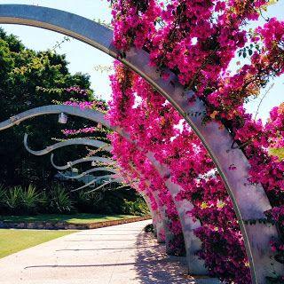 Brisbane Southbank Promenade