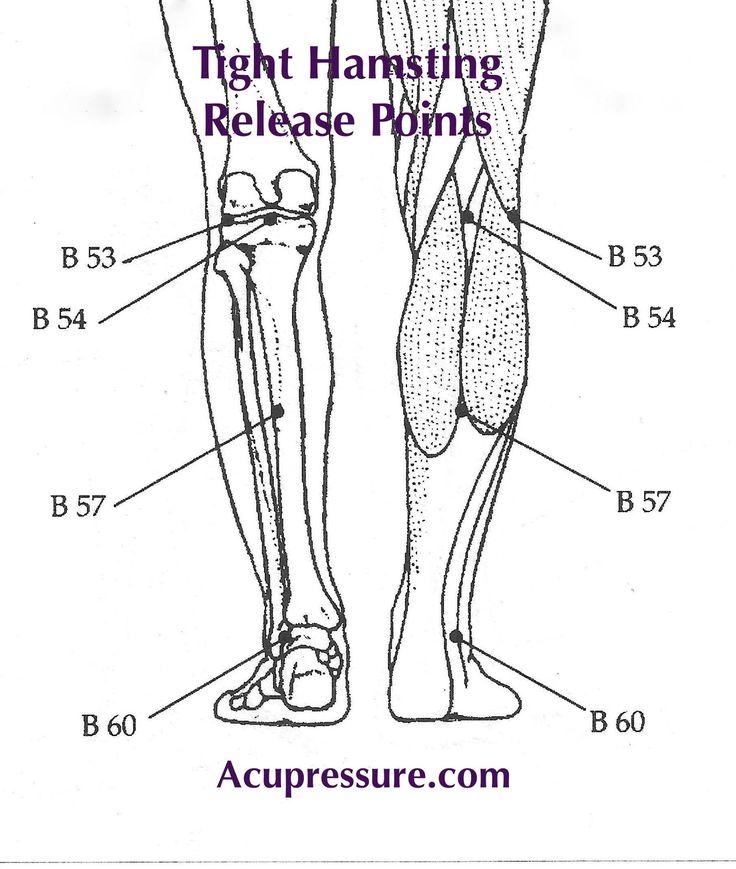 LEG TIGHTNESS & STIFFNESS: Press & briskly rub the points ...