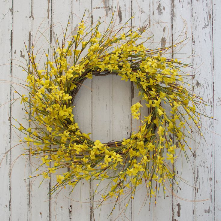 Golden forsythia wreath. Bring spring home with this wispy Golden Forsythia wreath that is covered in beautiful yellow blossoms. Sure to bring the brightness of sunshine to any space. Pair with the ma