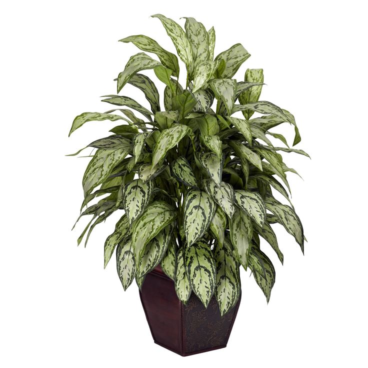 Silver Queen Decorative Planter Silk Plant - Overstock™ Shopping - Great Deals on Nearly Natural Silk Plants