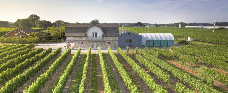 Rancourt Winery located in Niagara on the Lake