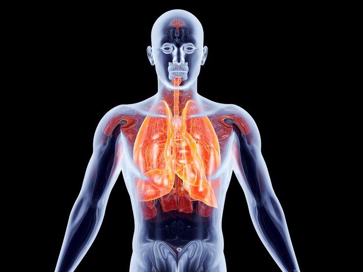 PURIFICACION DE AIRE AIRLIFE MUNDIAL te dice. El cáncer pulmonar es el tipo de cáncer más mortífero tanto para hombres como para mujeres. Cada año mueren más personas de cáncer en el pulmón que de cáncer de mama, de colon y de próstata combinados. El cáncer pulmonar es más común en adultos mayores y es poco común en personas menores de 45 años. . http://airlifeservice.com/