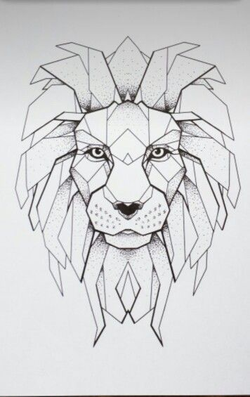 Geometric Line Drawing Artists : Best geometric lion ideas on pinterest