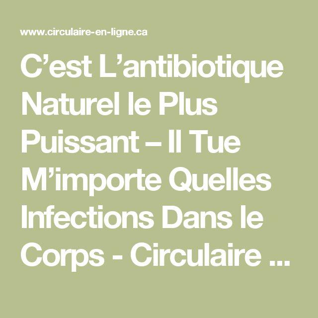 C'est L'antibiotique Naturel le Plus Puissant – Il Tue M'importe Quelles Infections Dans le Corps - Circulaire en ligne