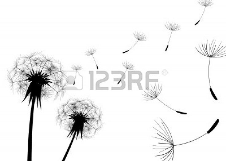 Blow Dandelions on white background. Stock Vector - 6340791