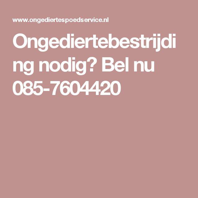 Ongediertebestrijding nodig? Bel nu 085-7604420