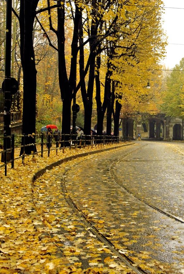 November Rain on Turin (Italy)...