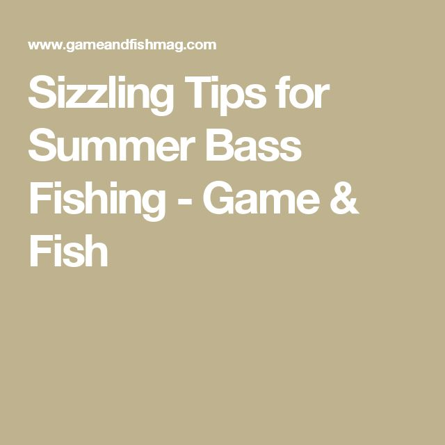 Sizzling Tips for Summer Bass Fishing - Game & Fish