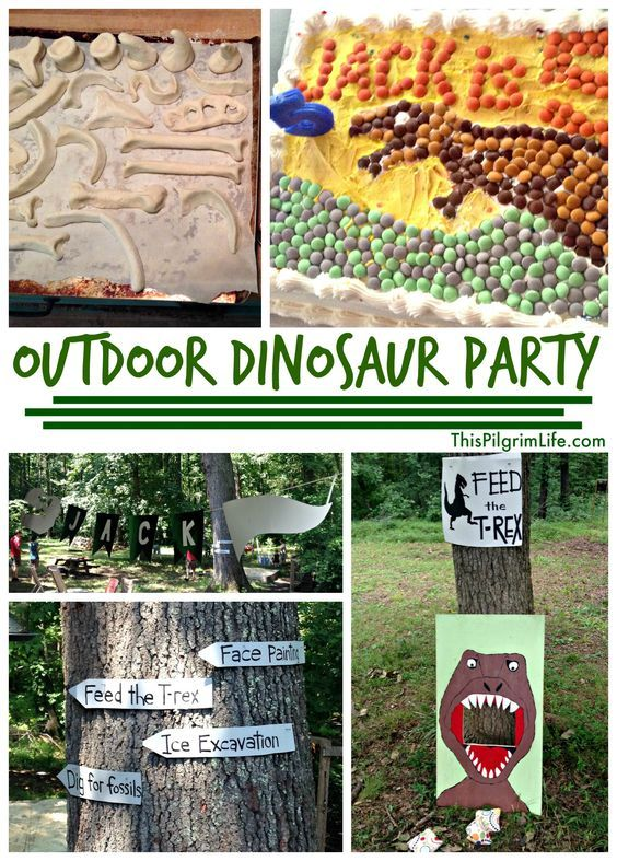 Outdoor Dinosaur Birthday Party Dinosaur birthday