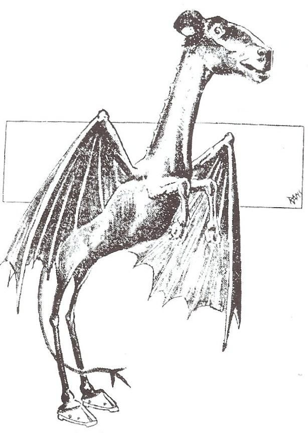 """""""The Jersey Devil is a legendary creature or cryptid said to inhabit the Pine Barrens of Southern New Jersey, United States. The creature is often described as a flying biped with hooves, but there are many different variations..."""""""