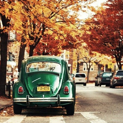 VW Bug - green bug with beautiful orange and red leaves.