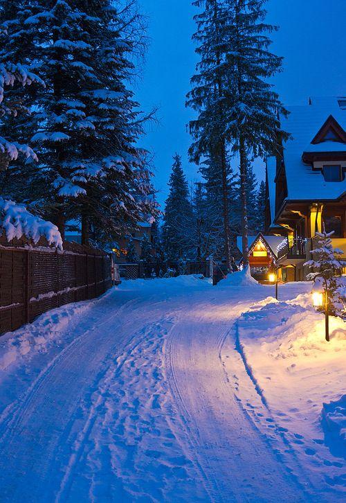 Snow Dusk, Zakopane, Poland photo by lisasilence