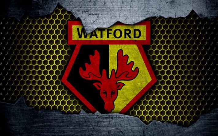 Best 25+ Watford Fc Ideas On Pinterest