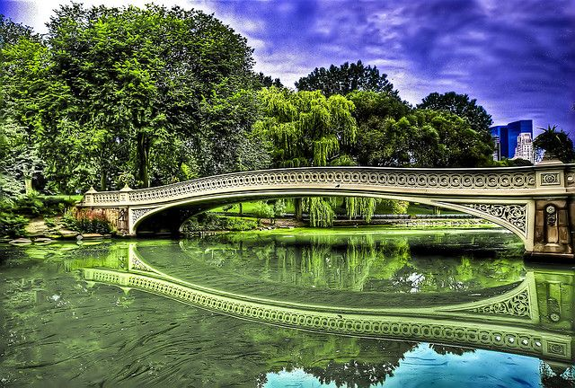 central park 7 Things to Do in New York City For First Time Visitors